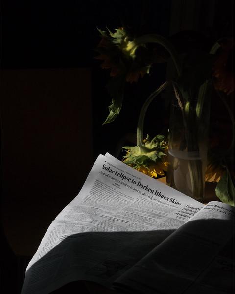 SunflowersHDR_Dark.jpg