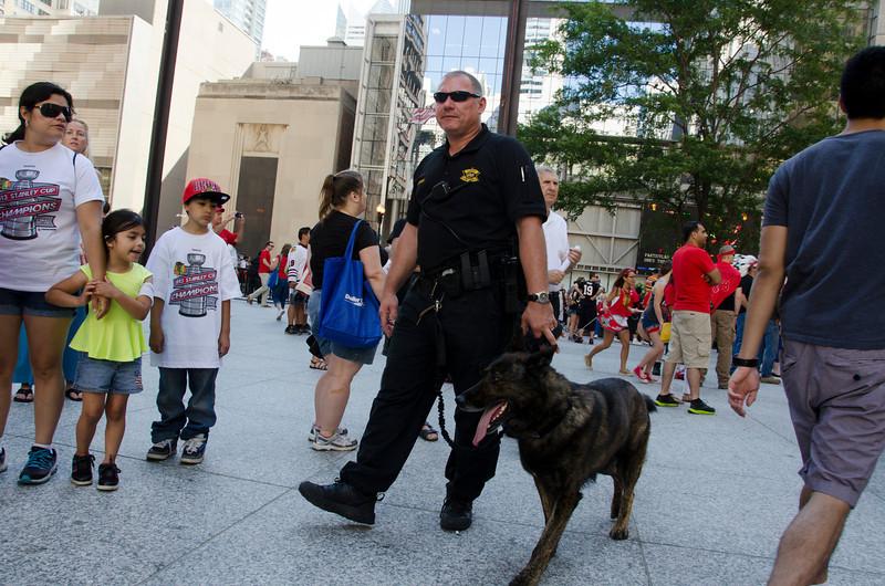 ChicagoBlackhawkParadePolicDogDSC_4876.jpg
