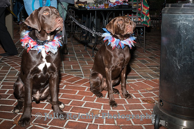 Lily Lavis Dog Birthday Party, November 2018