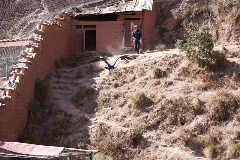 Peru_329.jpg