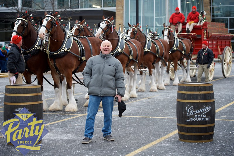 Clydesdale Portraits 11.jpg