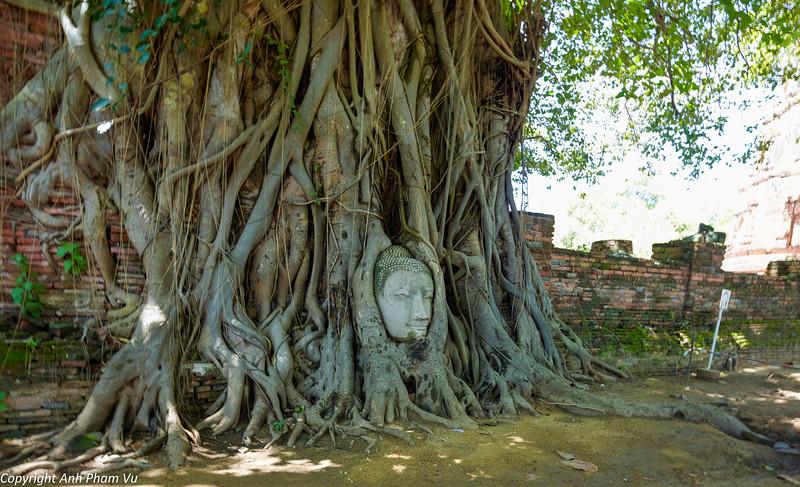 Uploaded - Ayutthaya August 2013 056.jpg