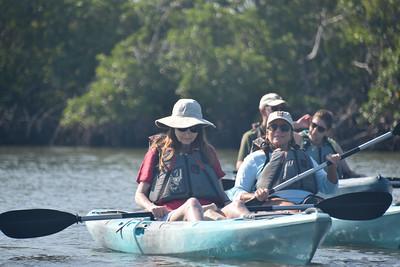 9AM Mangrove Tunnel Kayak Tour - Natural Habitat