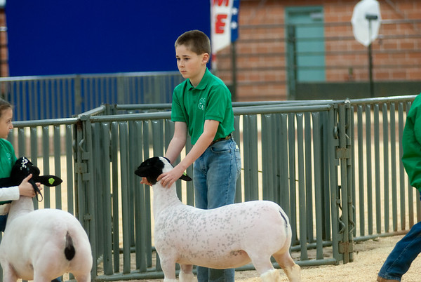 SW District Sheep Shows