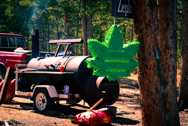 cannabiscup_tomfricke_160917-2274.jpg