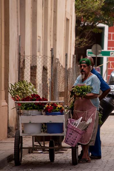 Cuba street vendor flowers 3325.jpg