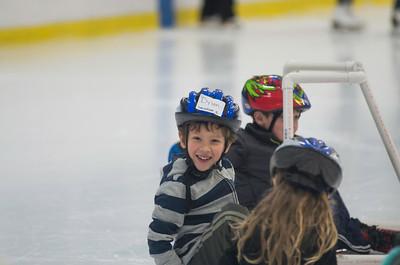 Skating Lessons 2015