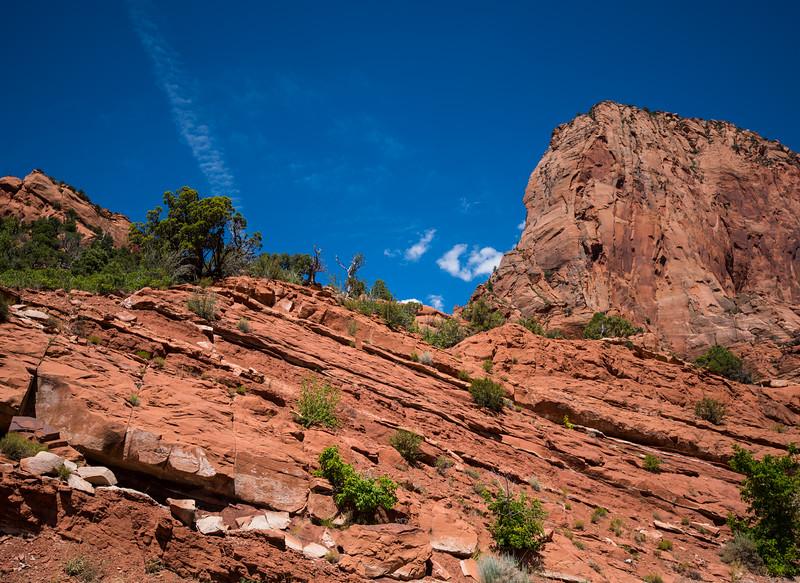 Kolob Canyons at Zion-9.jpg