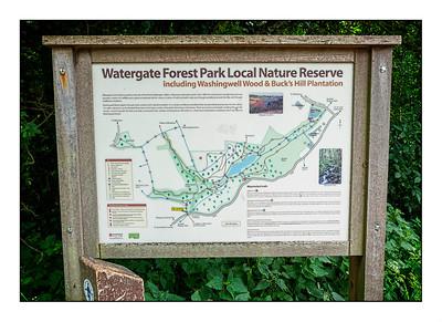 136 - Watergate Forest Park, Gateshead, Tyne & Wear, UK - 2021.