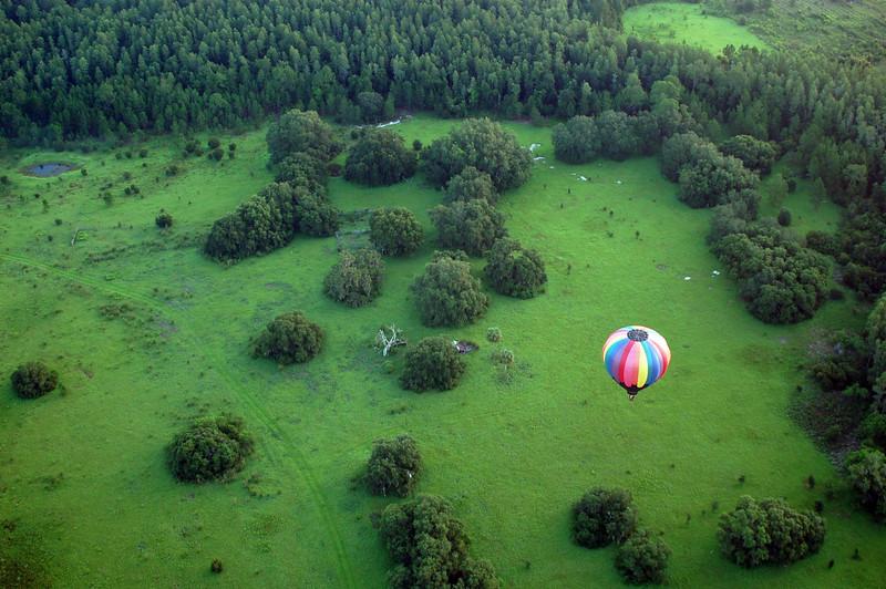 balloon_38.jpg