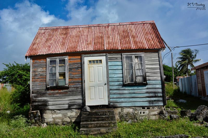 SA1_5146_Barbados_L.jpg
