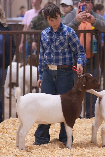 kay_county_showdown_goats_20191207-116.jpg
