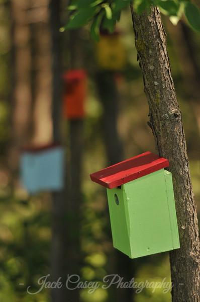 Vermont Bird Houses