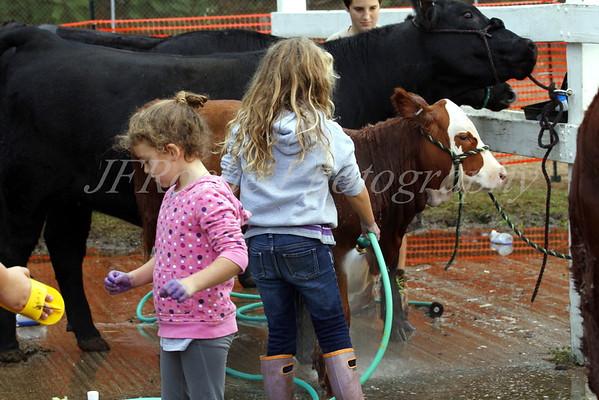 Four Town Fair  2015