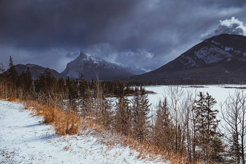 Banff - Feb 2015-8141.jpg