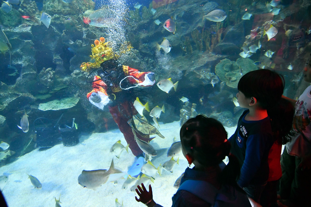 . A diver dressed in Fortune God costume waves to visitors after he fed fish as part of Chinese Lunar New Year celebrations at Aquaria KLCC underwater park in Kuala Lumpur, Malaysia, Friday, Feb. 16, 2018. The Lunar New Year which falls on Feb. 16 this year marks the Year of the Dog in the Chinese calendar. (AP Photo/Adrian Hoe)