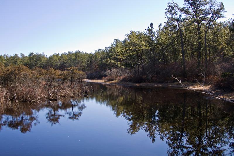 Paumanouk Trail, Sears-Bellows County Park, Southampton N.Y. - 02/13/2012