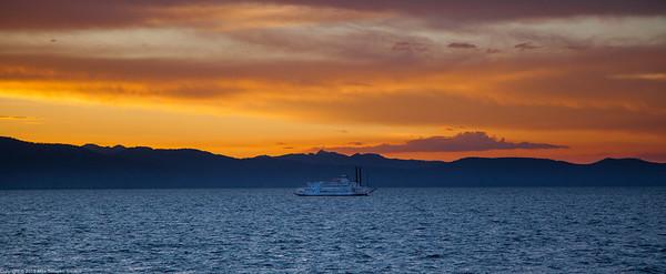 sunset cruise on safari rose