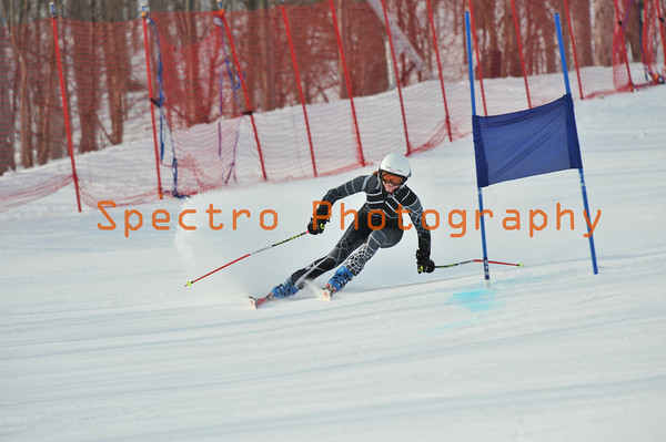 OFSAA Alpine 2011 Level II GS