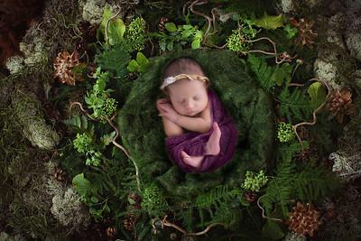 2017 | Blakeleigh, 11 days old