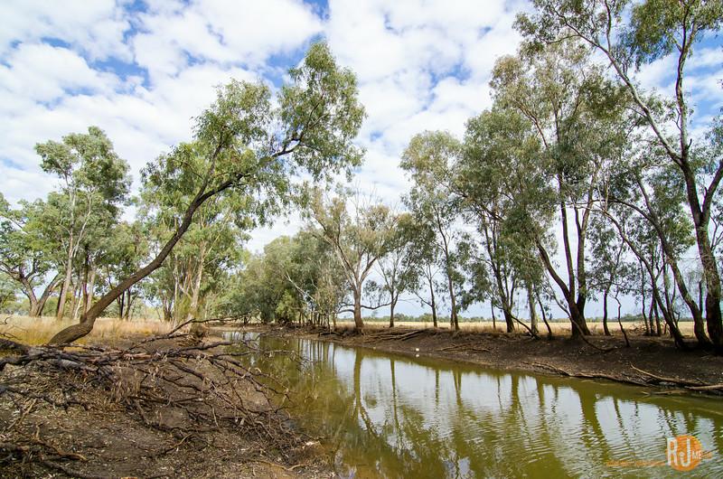 Australia-queensland-charleville-outback-3813.jpg