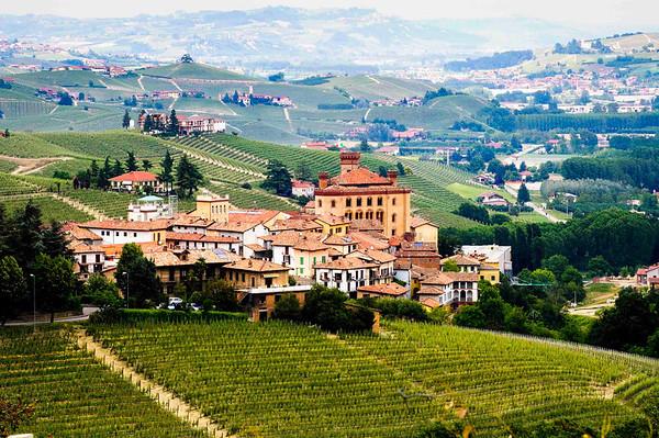 Piedmonte