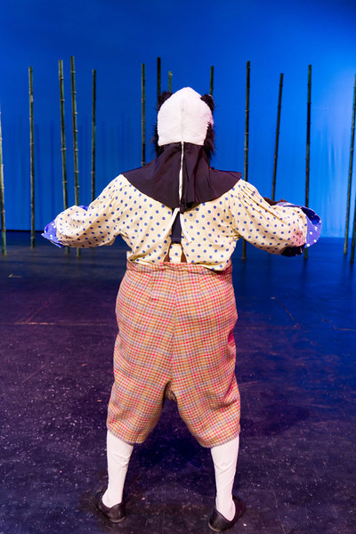 Willows Costumes-2982.jpg