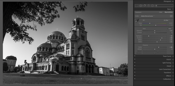 Using the B&W Panel for monochrome images