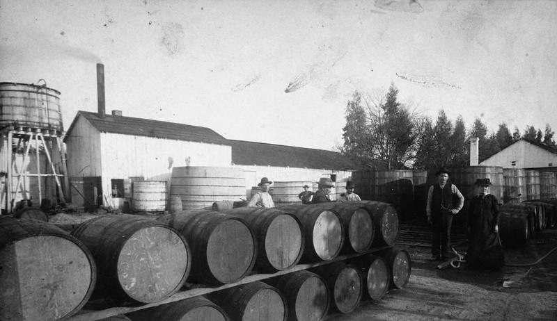 1884-Anaheim-DreyfusWinery-b.jpg