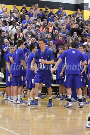 Boys Basketball, Danville vs Lone Tree, SEISC Shootout at Mid-Prairie, Wellman 2/8/2013