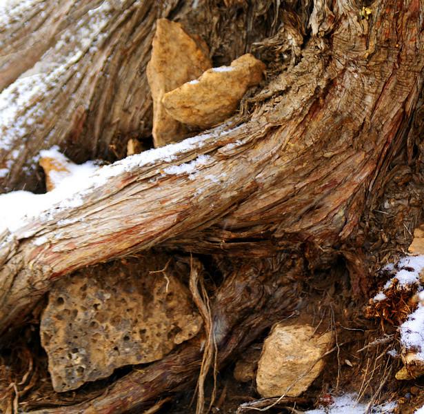 wood and rock kate2_MG_2719.jpg