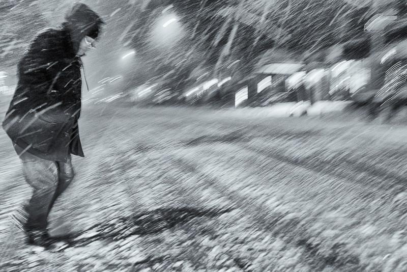 Snowstorm012114-9.jpg