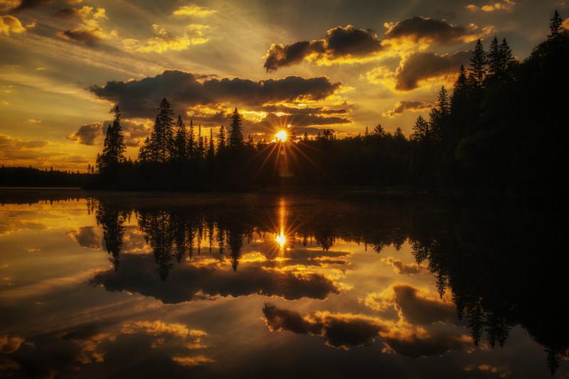 moose-safari-algonquin-park-ontario-29.jpg
