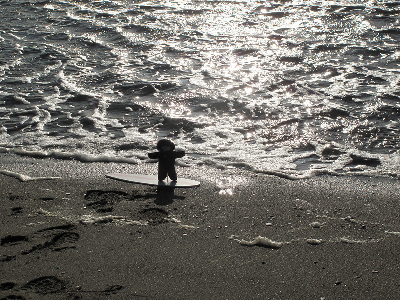 Flat Stanley catches a wave.