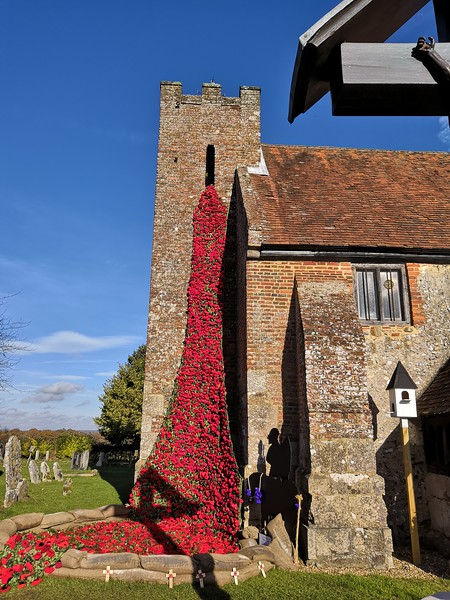 St John The Baptist Poppies 14 Nov 2018