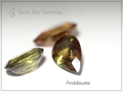 Andalousite - Terre Des Gemmes
