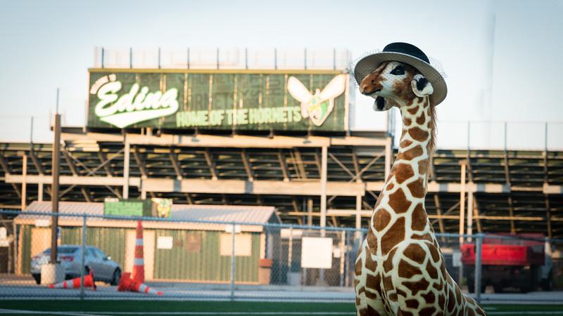 Giraffe-3115.jpg