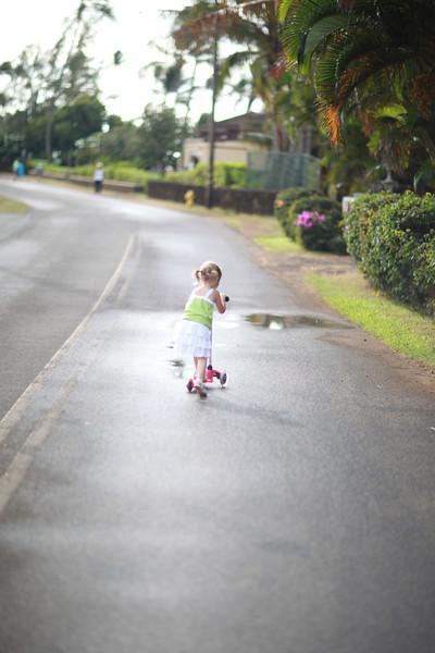 Kauai_D4_AM 038.jpg