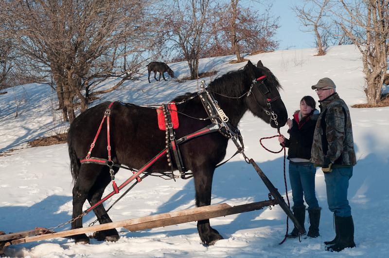 HorseRide-3.jpg