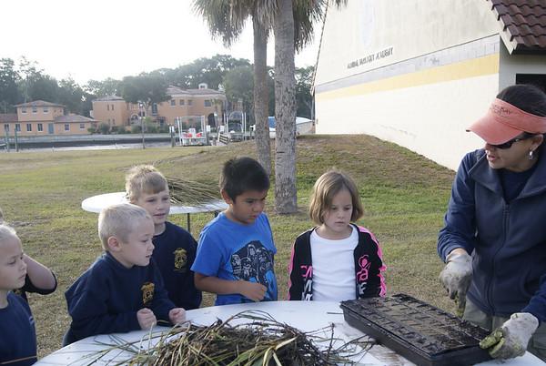 1st Grade Salt Marsh Project 2012