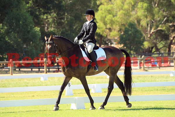 2014 02 01 Acres Dressage Series Grassed Arenas 09-00 till 10-00