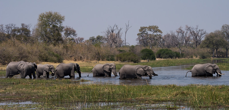 Botswana_June_2017 (2876 of 6179).jpg