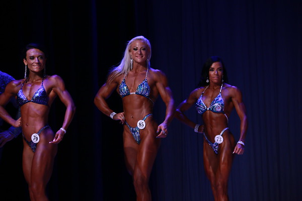 NPC ALL SOUTH Night Show -1