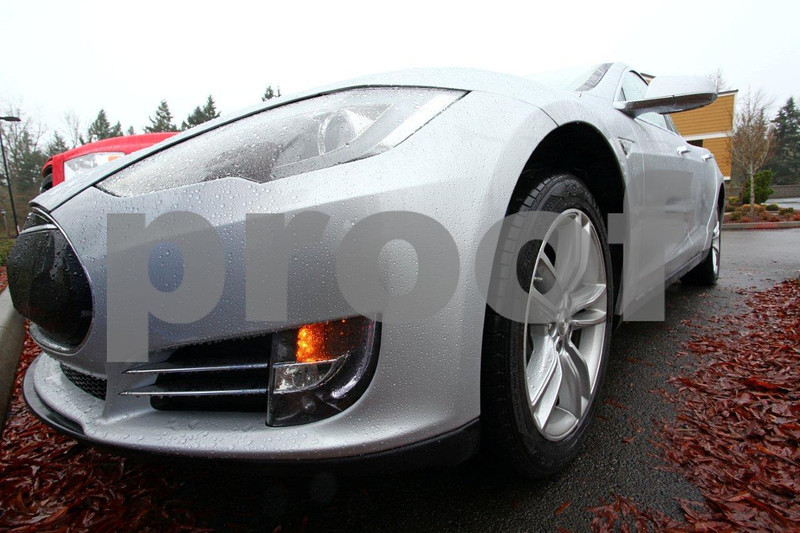 Tesla front left 4465.jpg