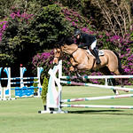 The Ridge Farm Show Jumping