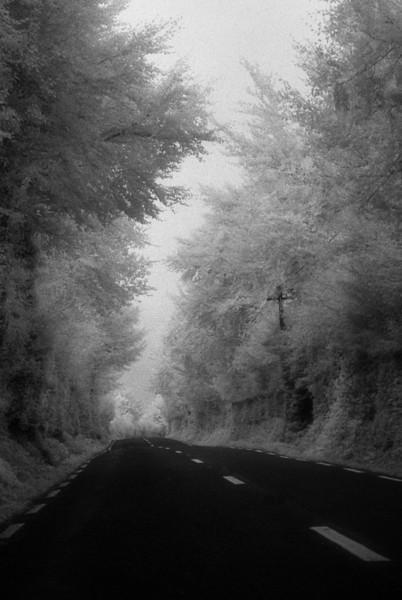 Road to Perdit 16x24.jpg
