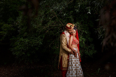 Vishal & Nikita Wedding