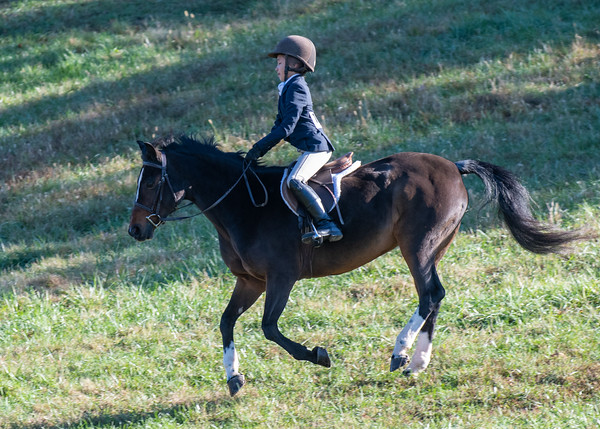Clement family at Deep Run Hunter Trials 2019