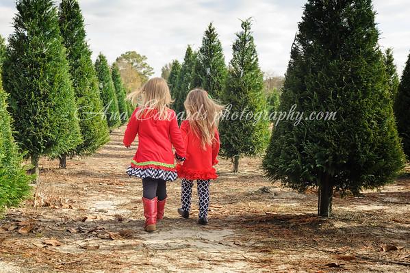 Abigail and Brooklyn  |  Busy Elves Christmas Tree Farm.  Lee County,  Georgia