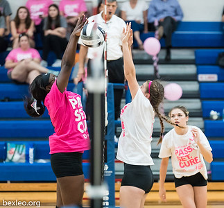 Volley for a Cure (Whitehall)